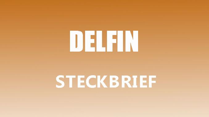 Teaserbild - Delfin Steckbrief